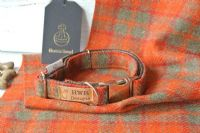 Orange  Tweed Dog collar